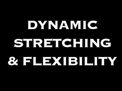 dynamic stretching flexibility