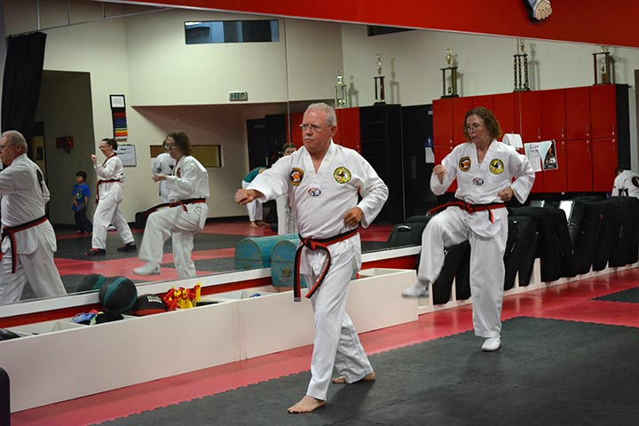 wise warriors taekwondo class