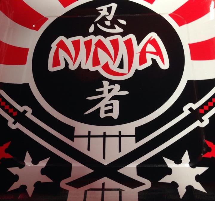 2015 Martial Arts Camp and Ninja Tumbling Camp