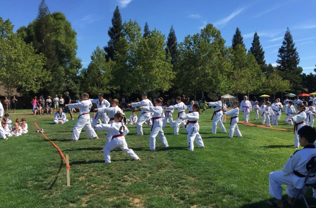 Testing and Annual Picnic in the Park, 8-15-15