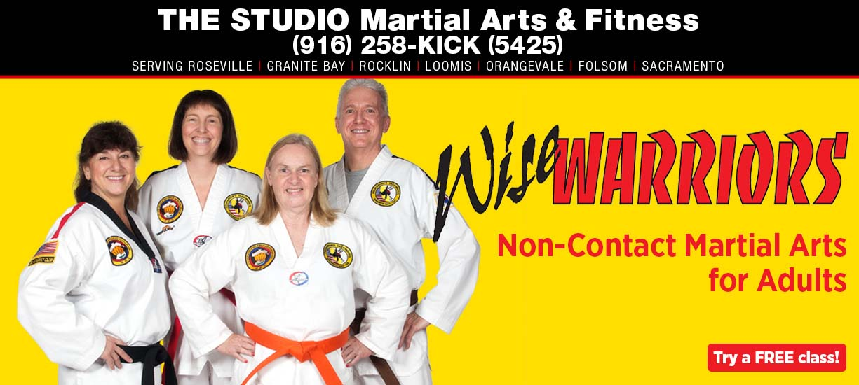 wise warriors martial arts for seniors