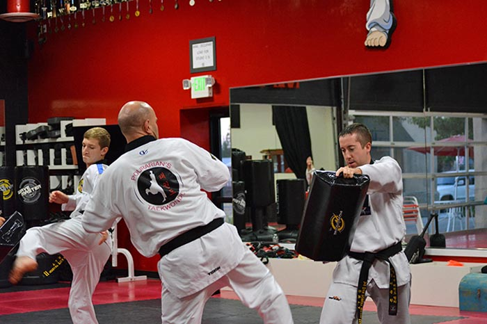 mens taekwondo