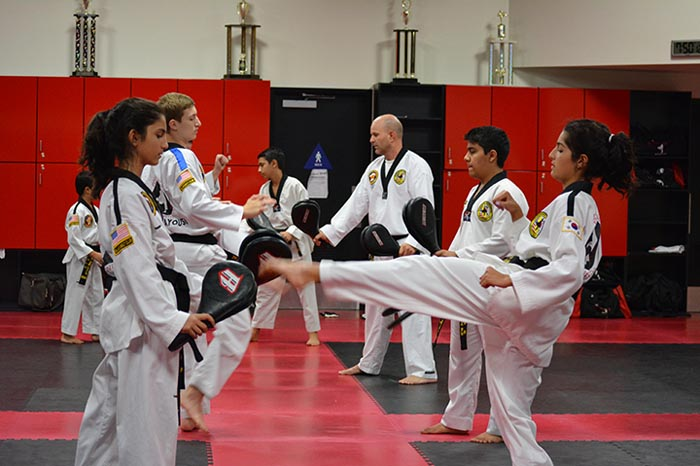 teen adult taekwondo classes roseville studio