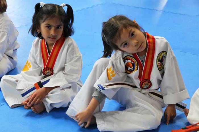 tiny tigers taekwondo for kids