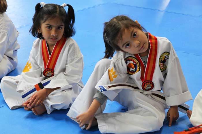 tiny tigers taekwondo for kids