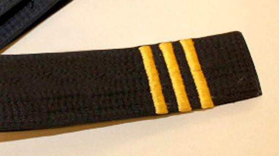 3rd degree black belt