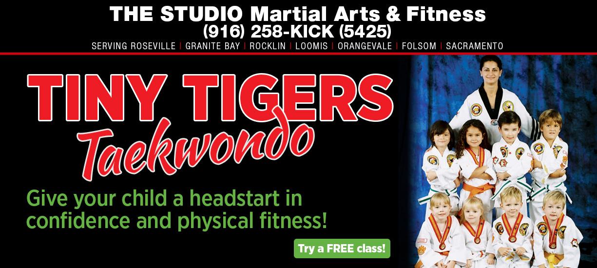 tiny tigers taekwondo for little kids