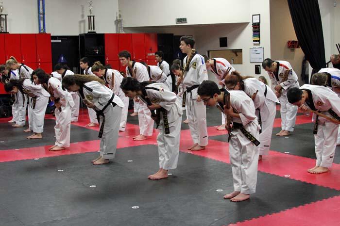 taekwondo black belt class