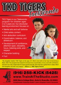 tiny tigers taekwondo preschool