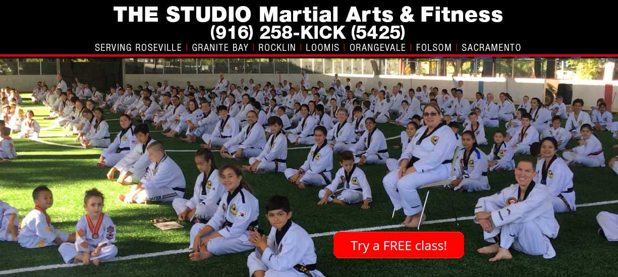 THE STUDIO Roseville taekwondo school